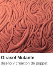 MiniCT_Girasol